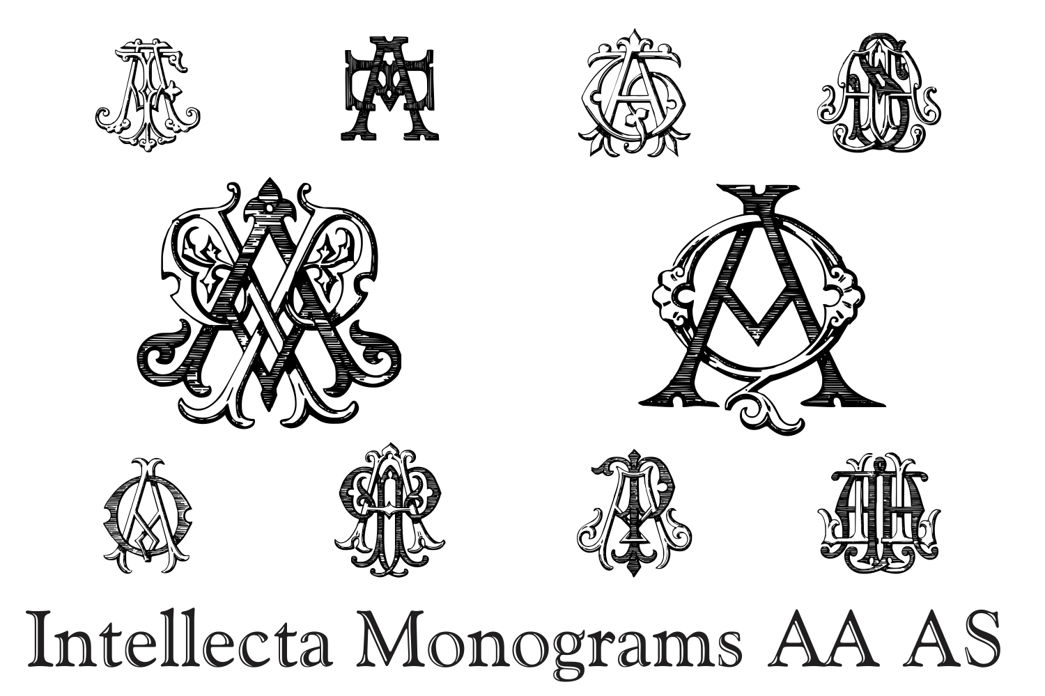 IntellectaMonograms AAAS example image 4