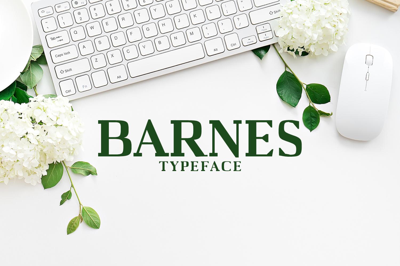 Barnes Serif Typeface example image 1