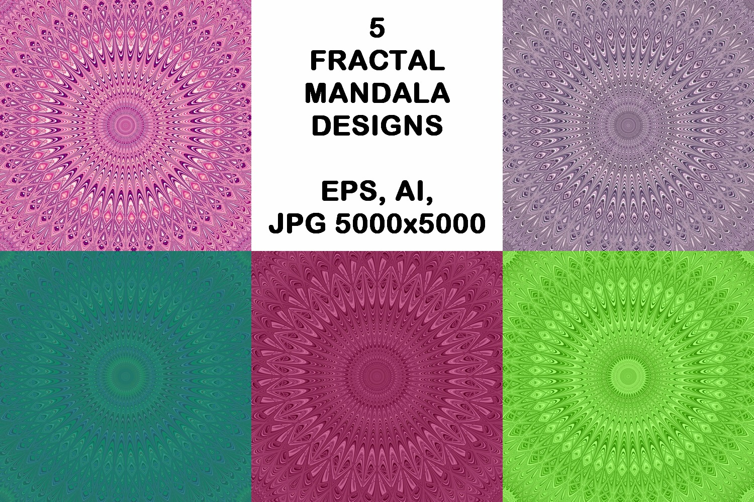 5 Mandala Backgrounds (AI, EPS, JPG 5000x5000) example image 1