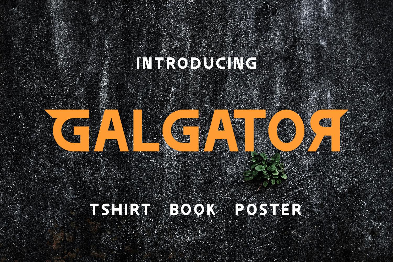 Galgator example image 1