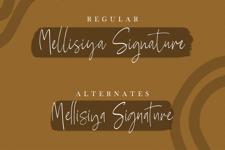 Mellisya Signature example image 6
