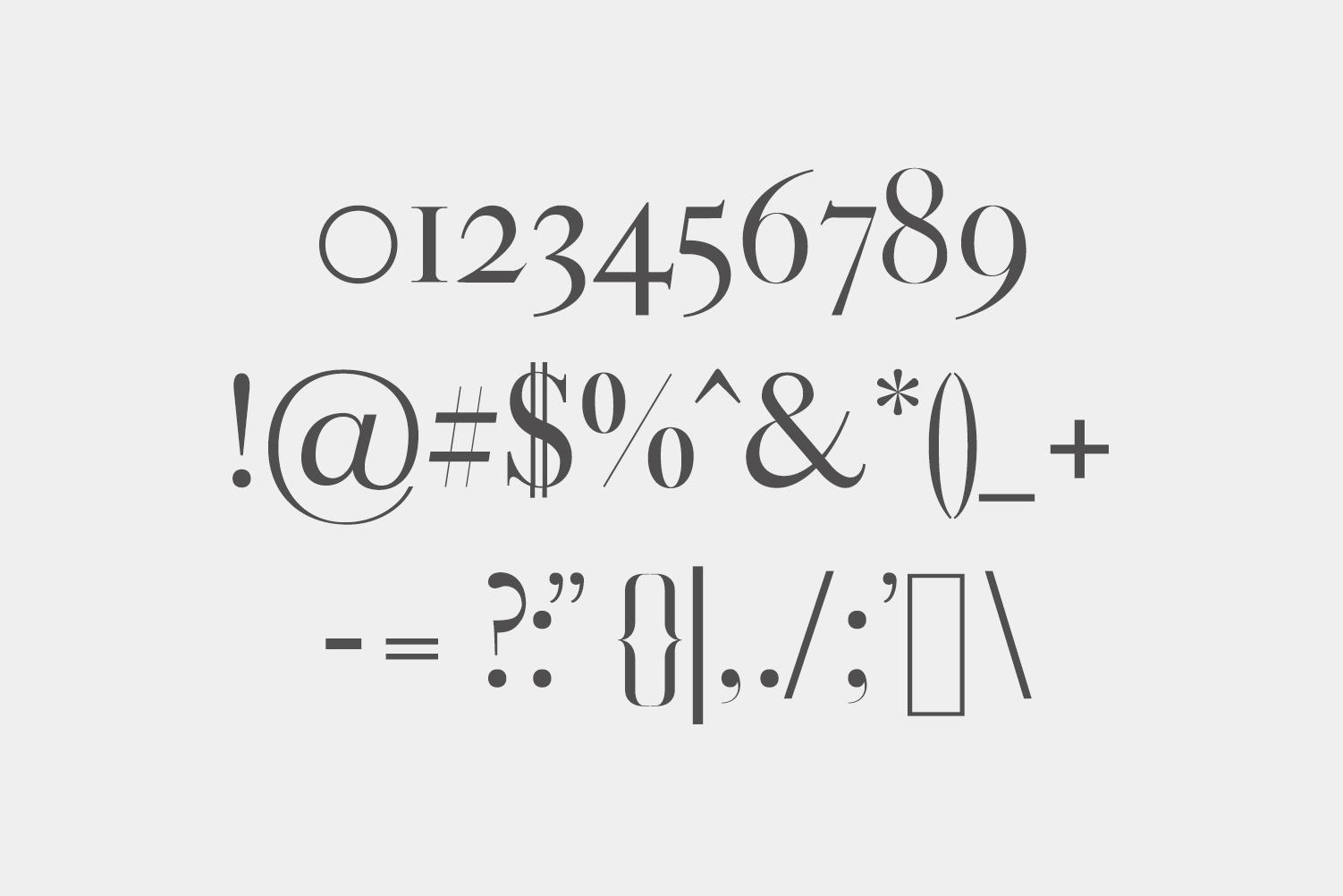 Gunma Serif Font Family Pack example image 3