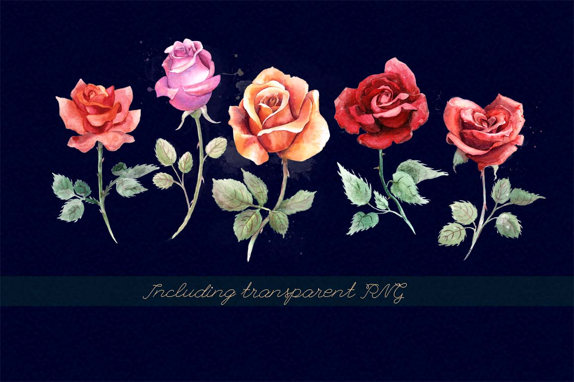 5 watercolor roses example image 2