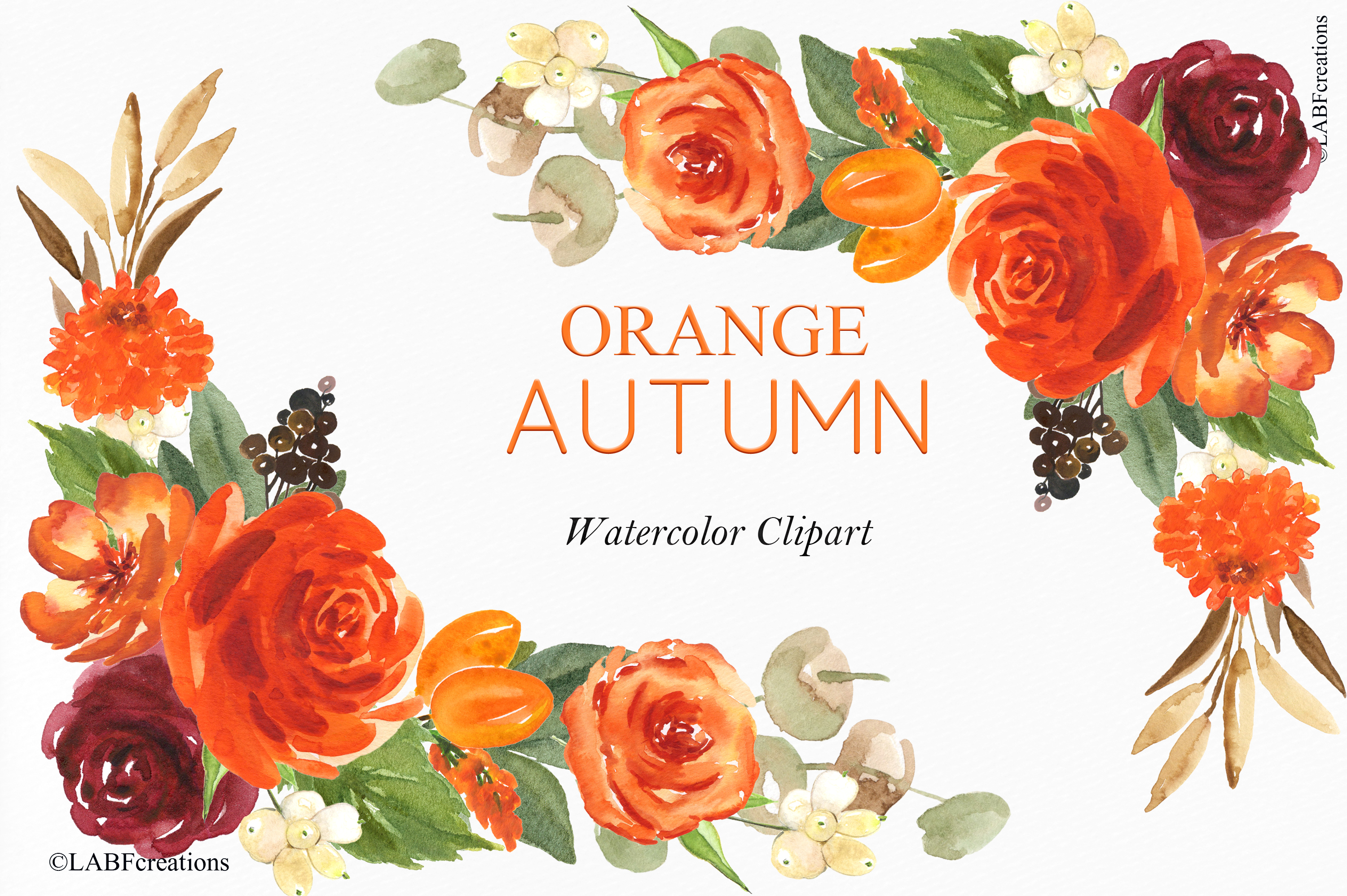 Orange, red and burgundy autumn flowers collection. example image 7