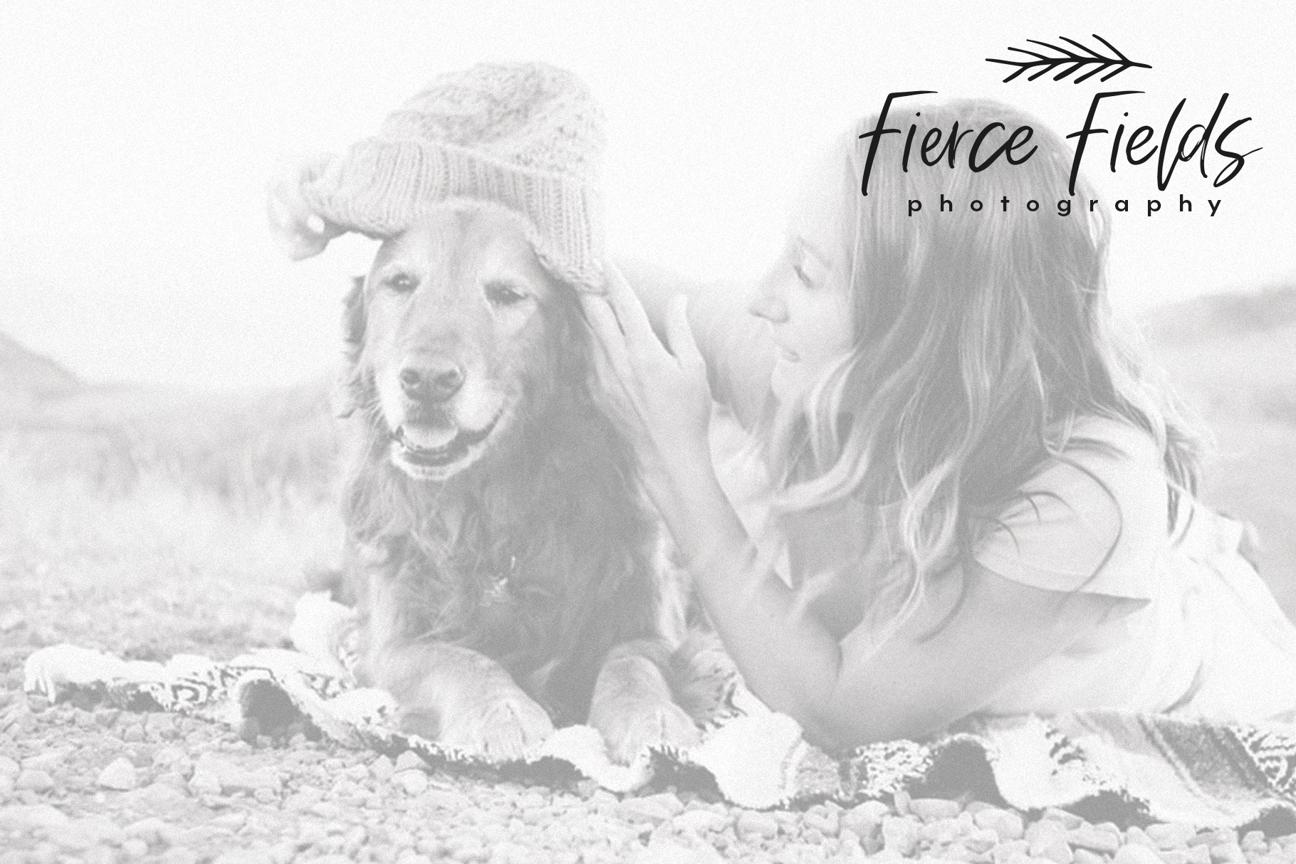 Fall Harvest - A Handwritten Script Font with extras! example image 11