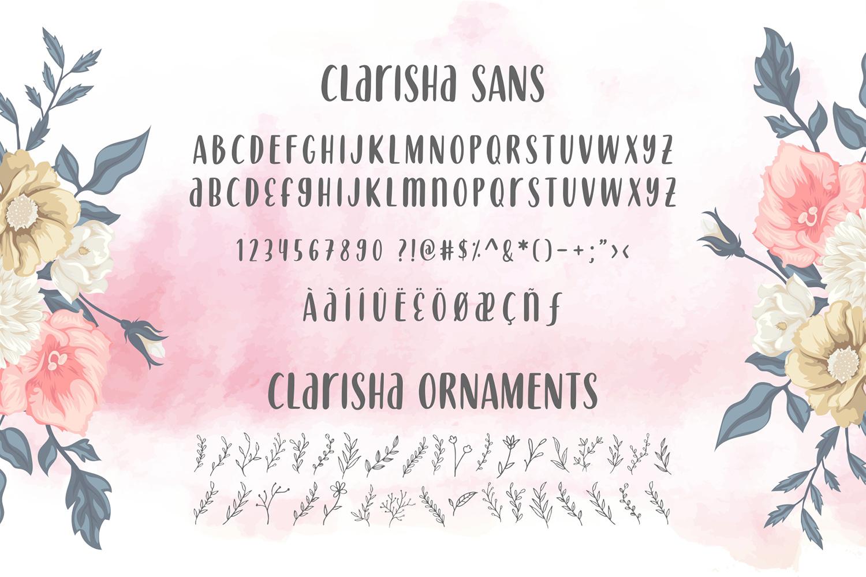 Clarisha Font Duo example image 7