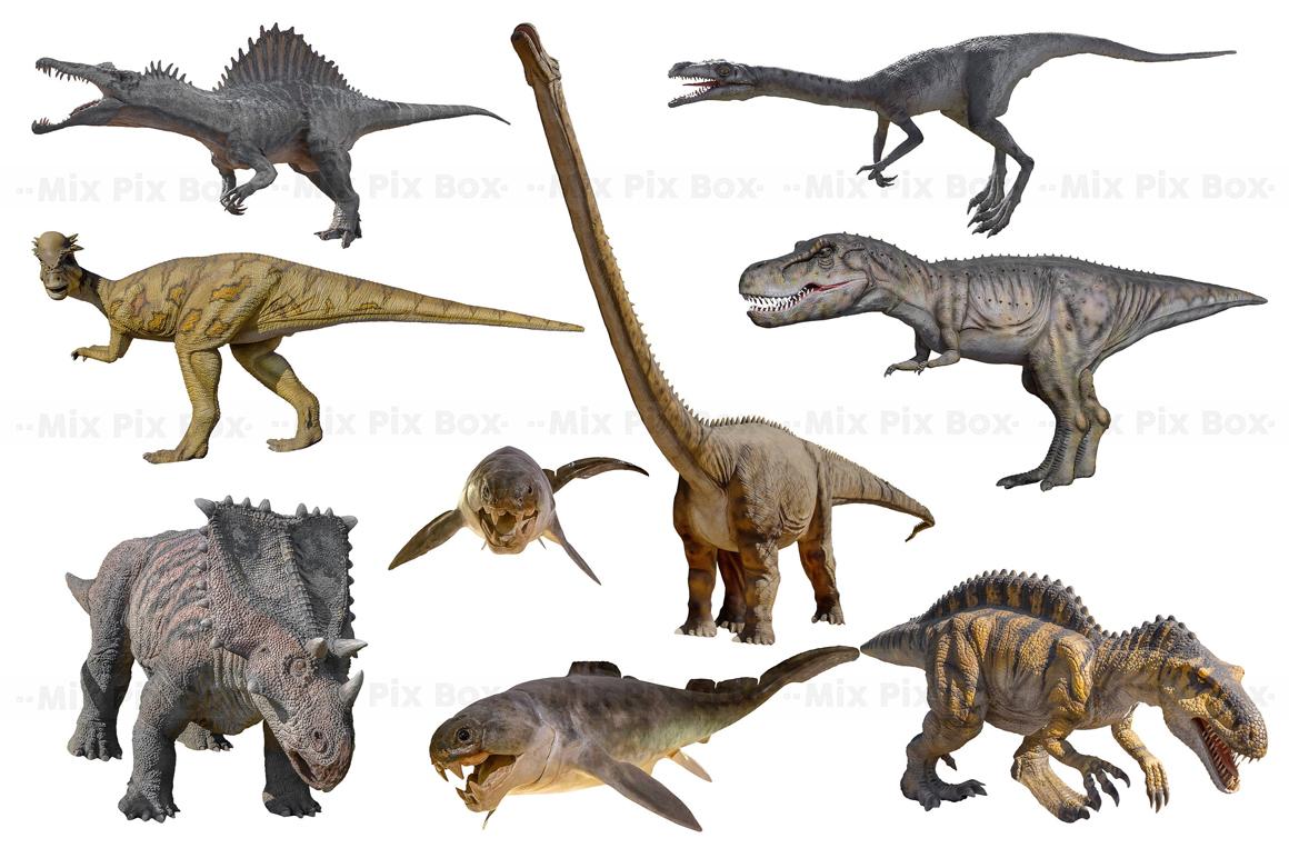 Dinosaur v.2 Photo Overlays example image 5