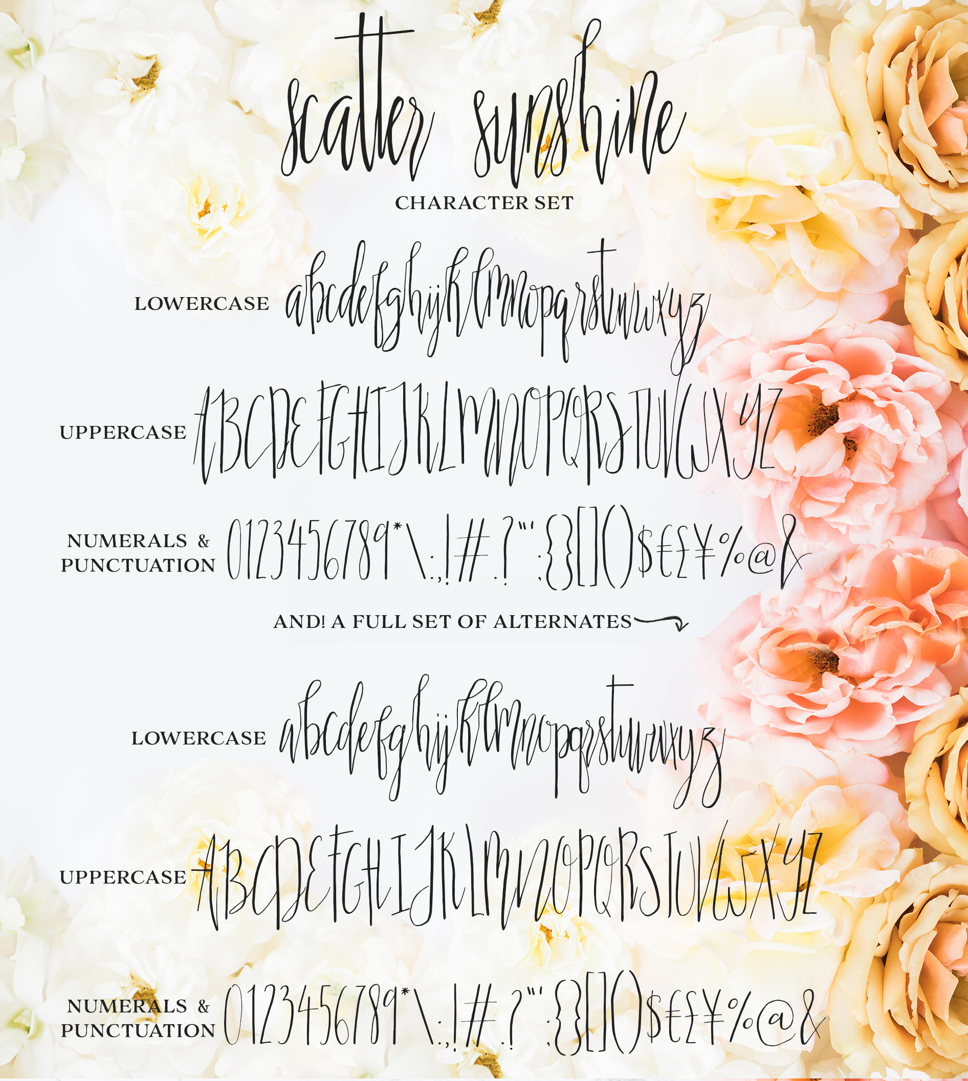 Scatter Sunshine Typeface example image 9