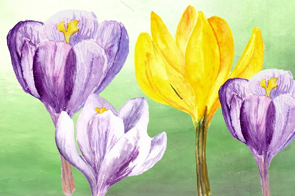 Spring Melody Watercolor Clipart Set example image 3