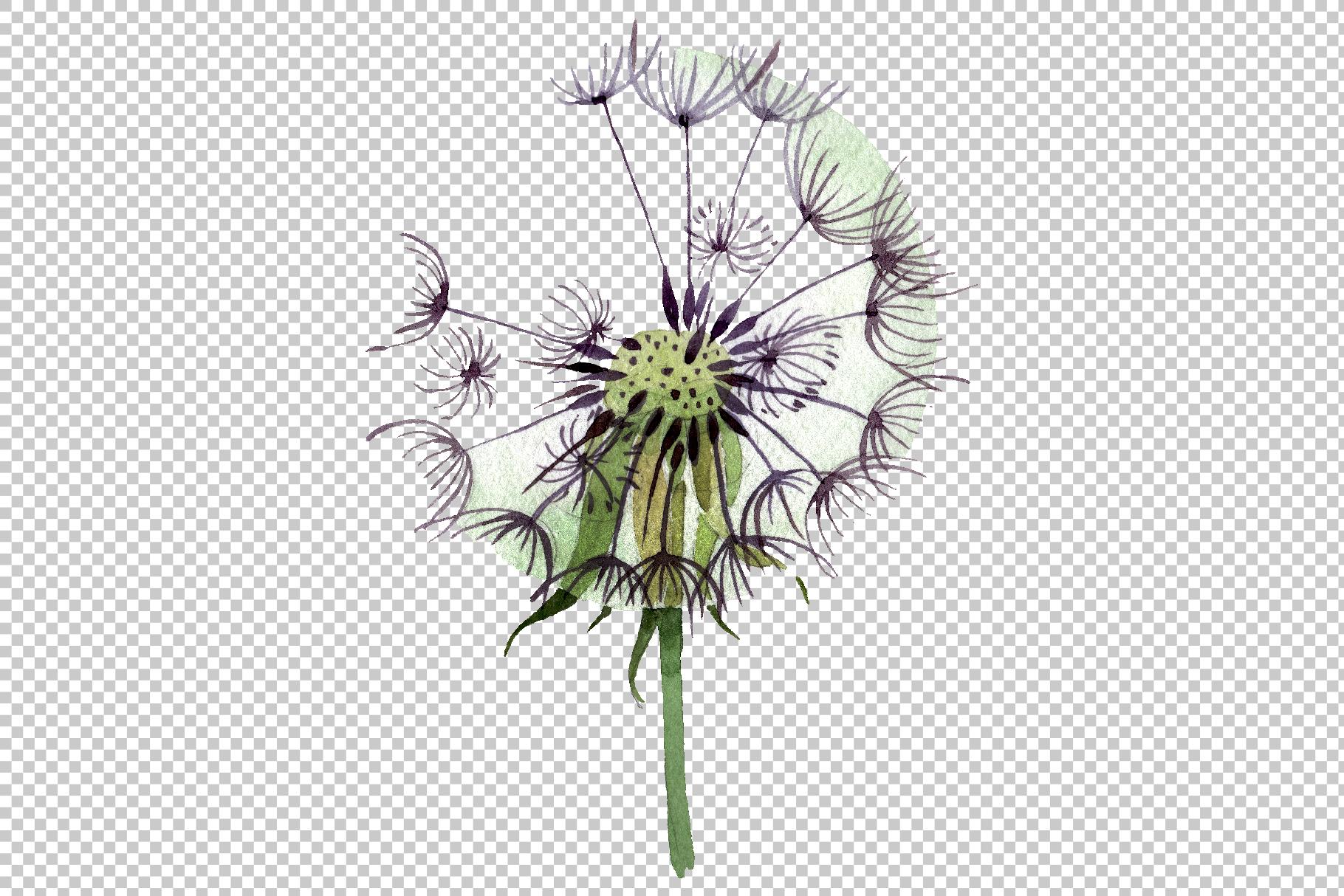 Dandelion summer greeting watercolor png example image 3