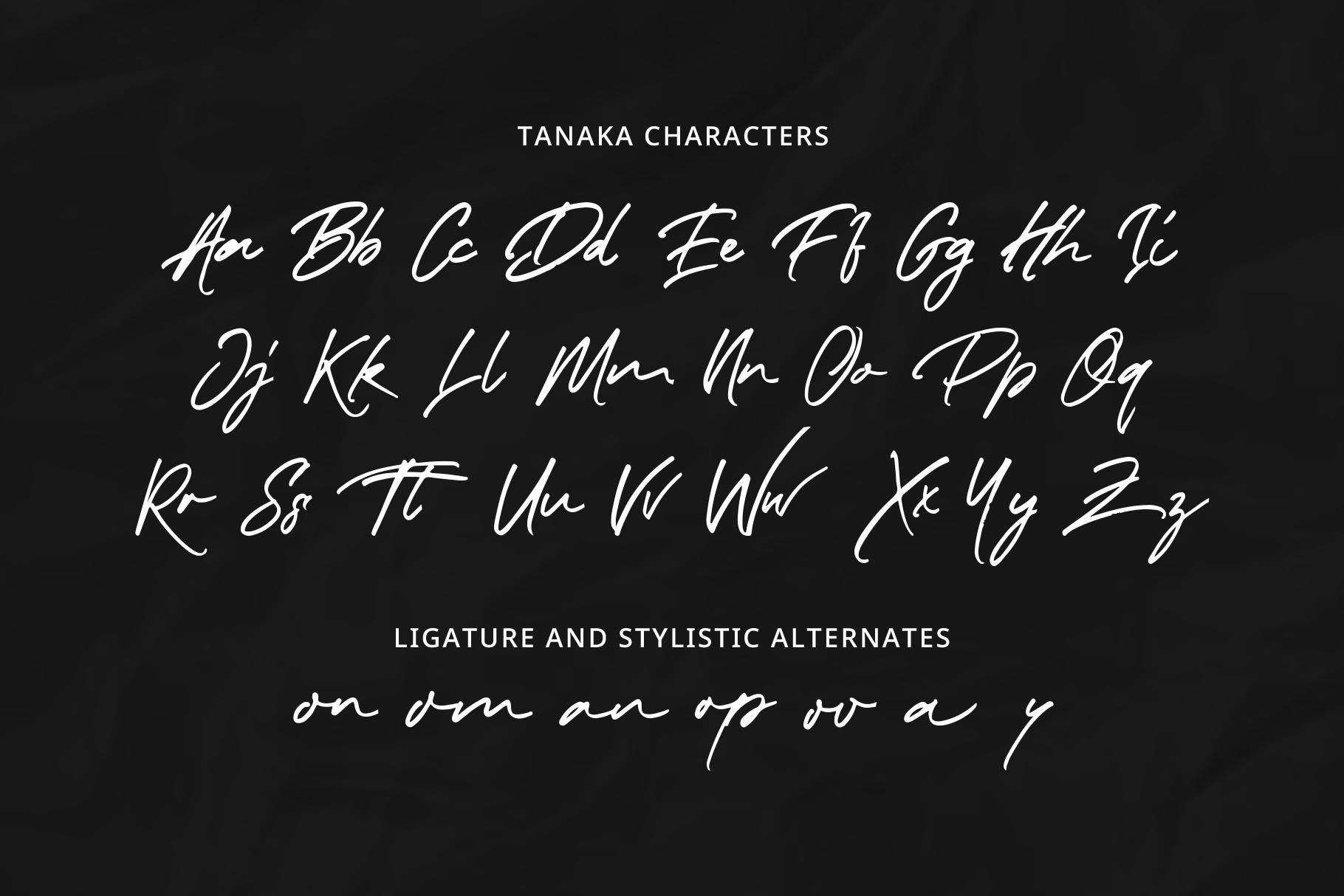 Taneka Handwritten example image 9