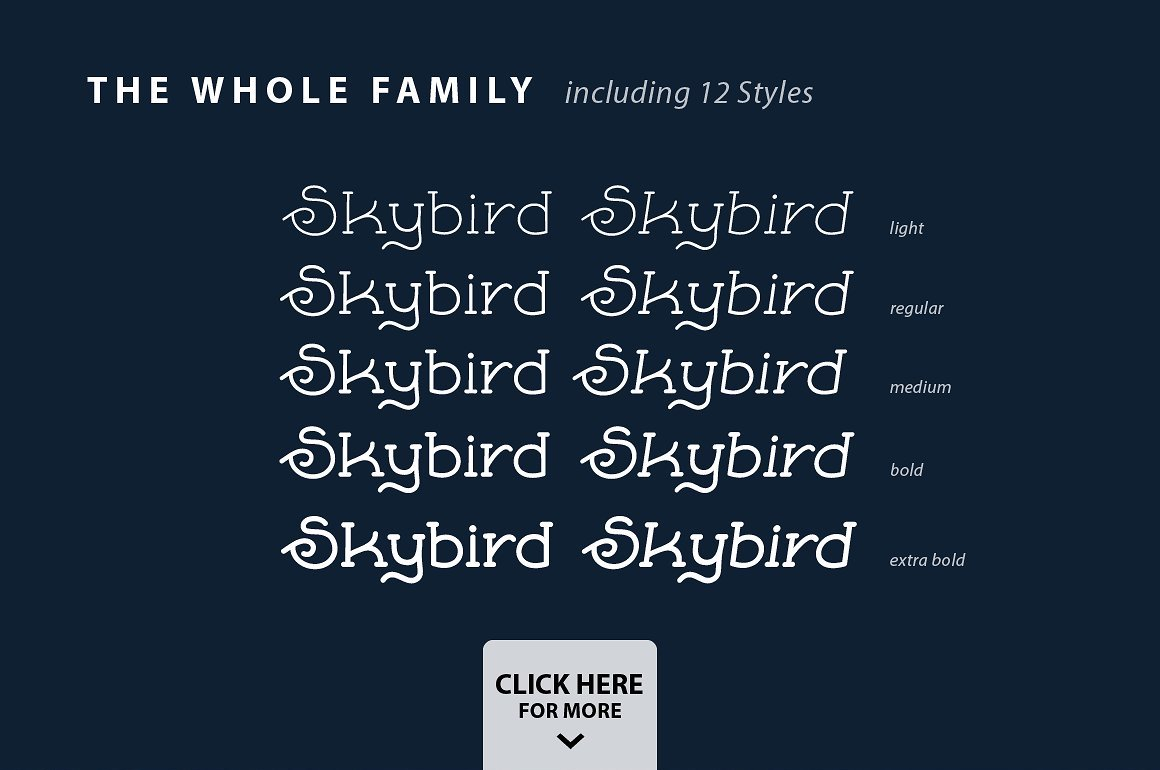 Skybird Family - Crazy, unique & retro example image 2