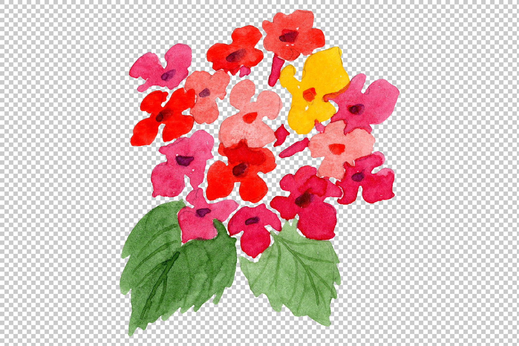 Red Lantana Watercolor png example image 8