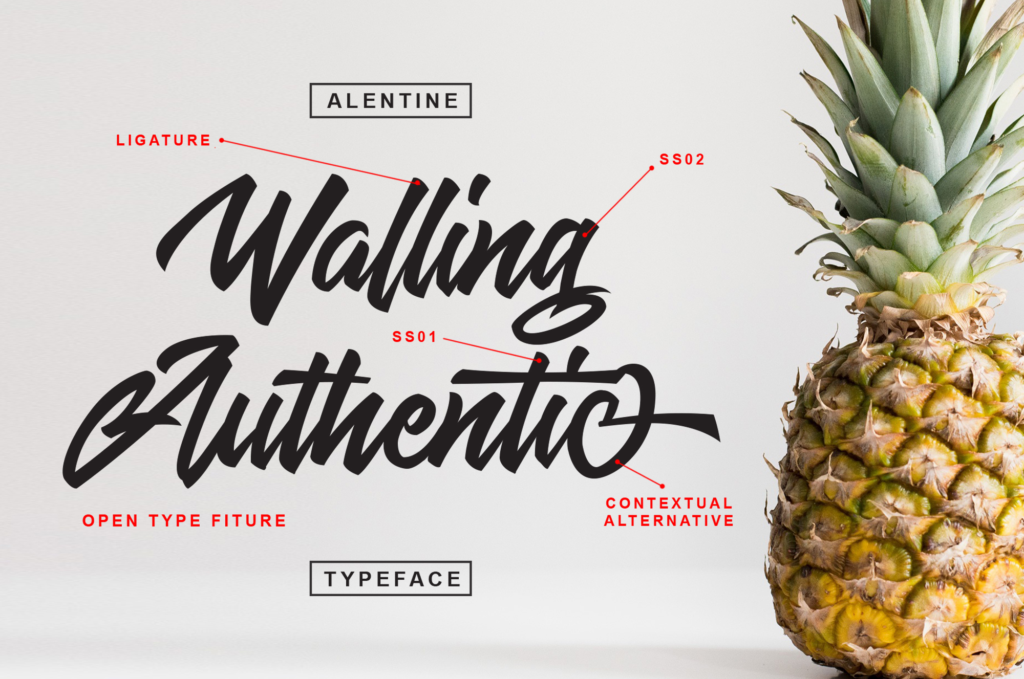 Alentine Typeface example image 4