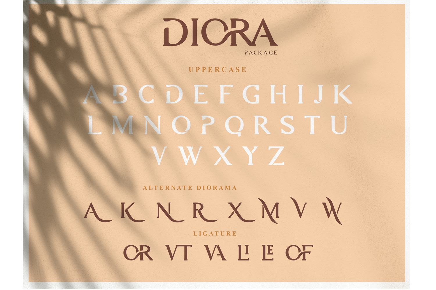 Diora Sunbright Font Duo example image 15