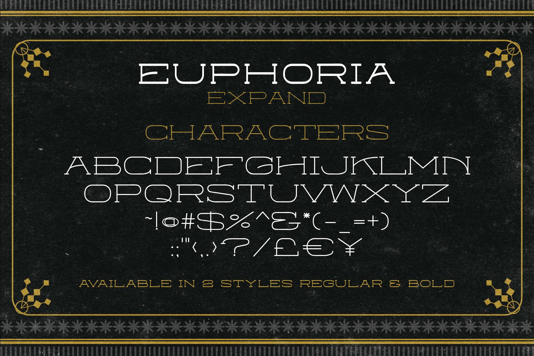 Euphoria Font Family example image 8