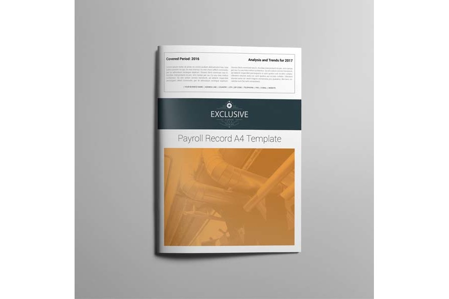 Payroll Record A4 Template example image 5