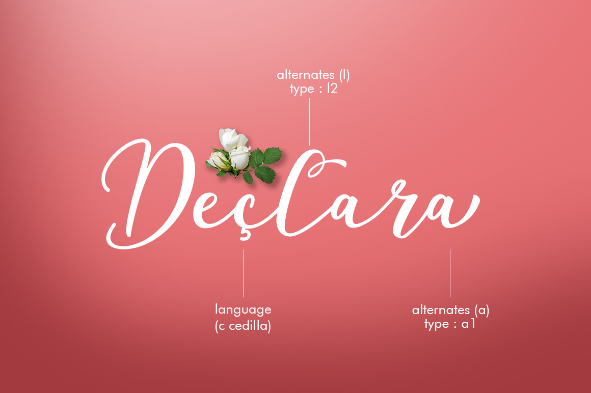 Declara Script example image 7