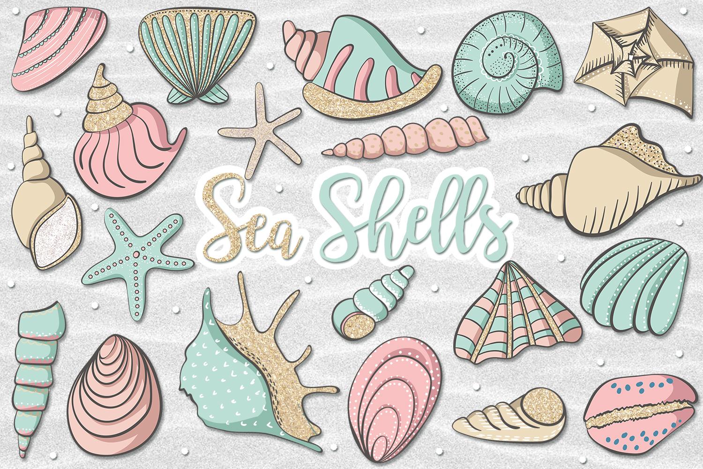 Sea Shells example image 1