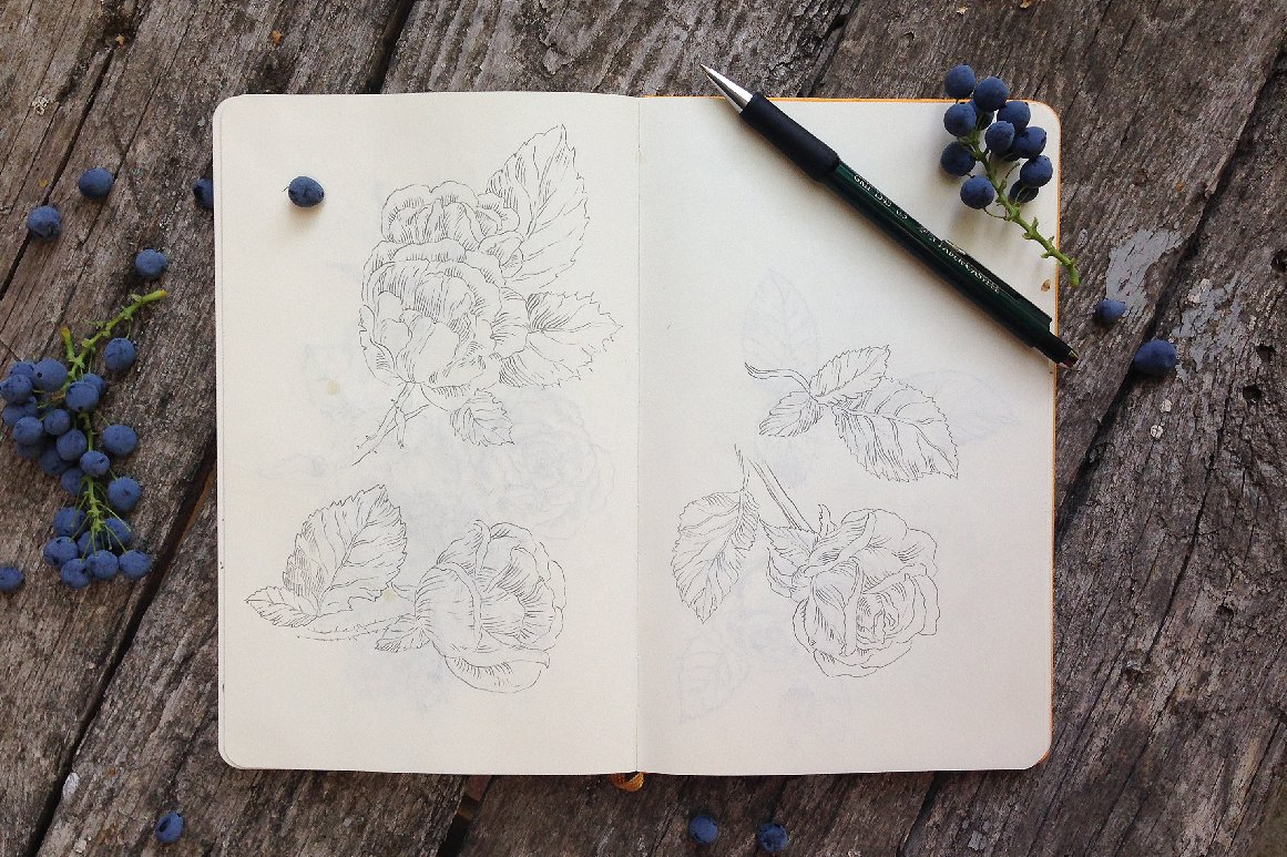 12 handsketched flower elements example image 6