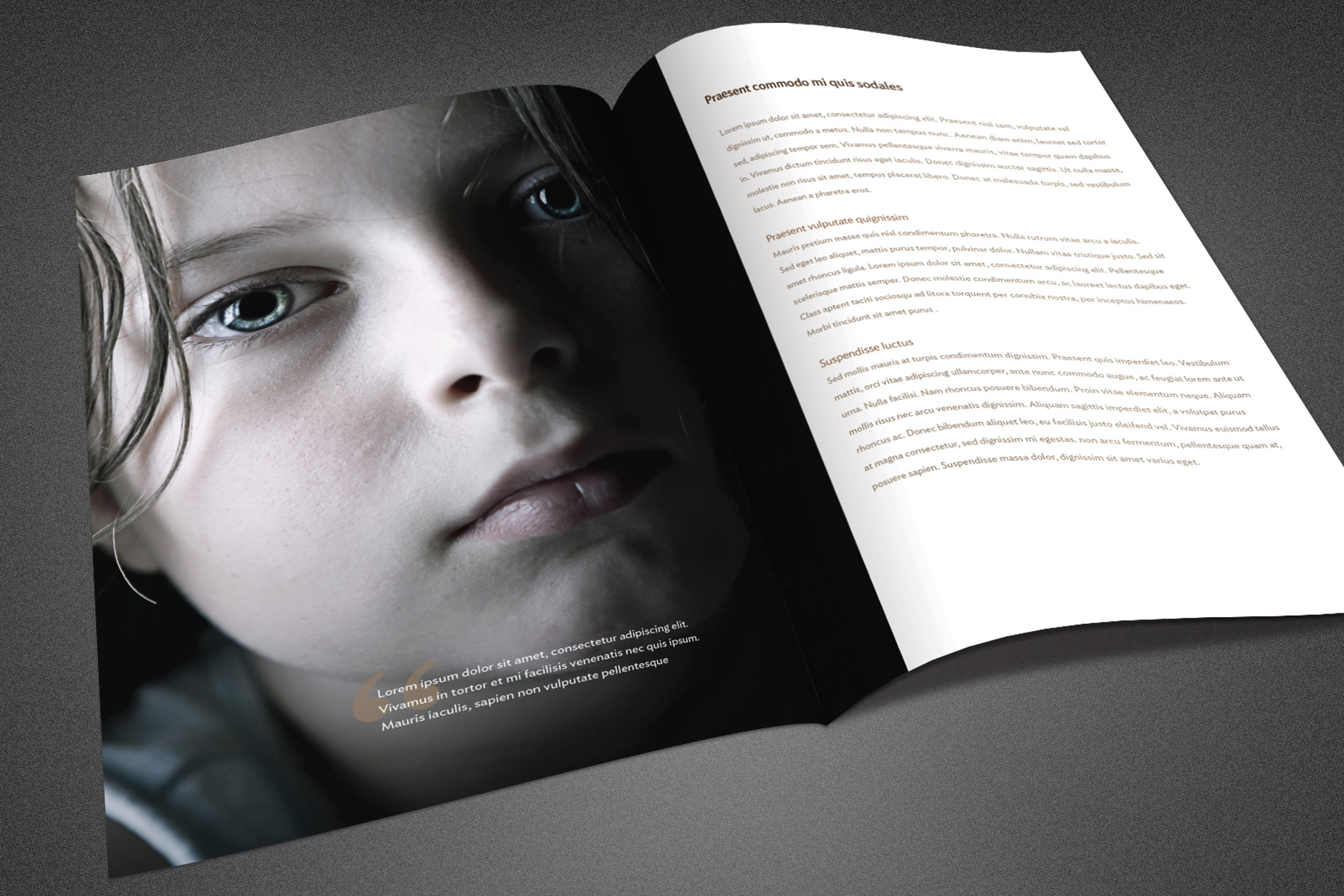 Charity Foundation Brochure Template example image 5