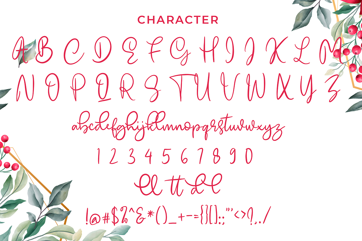 Emellyn Modern Calligraphy Font example image 6