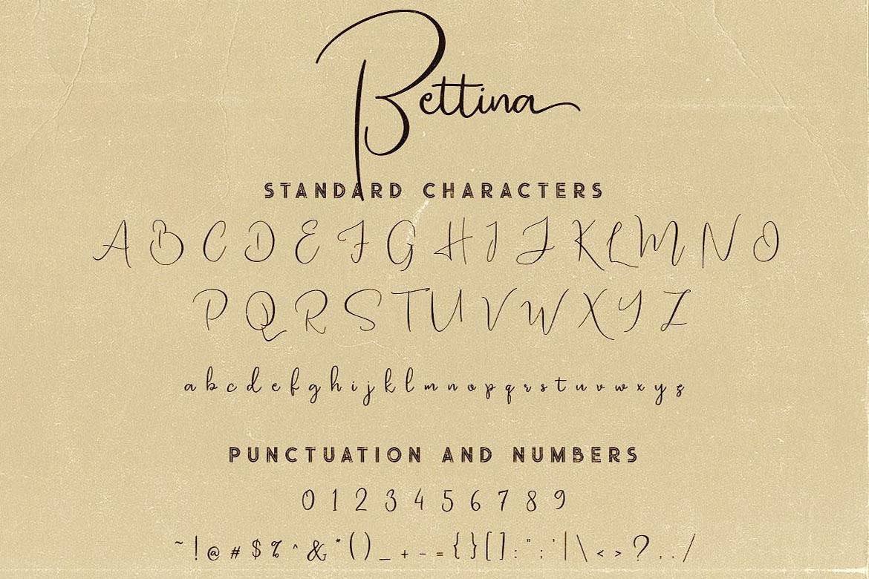 Bettina Script Font example image 5