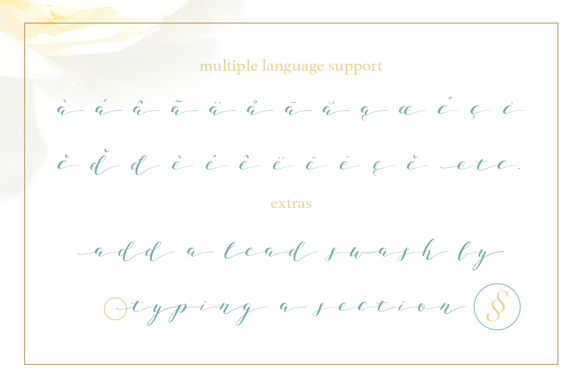 Joleni Font - modern elegant calligraphy example image 4