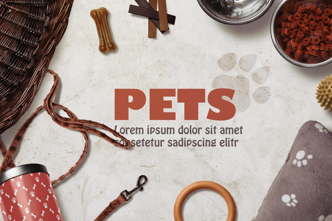 Pet Scene Generator  example image 2