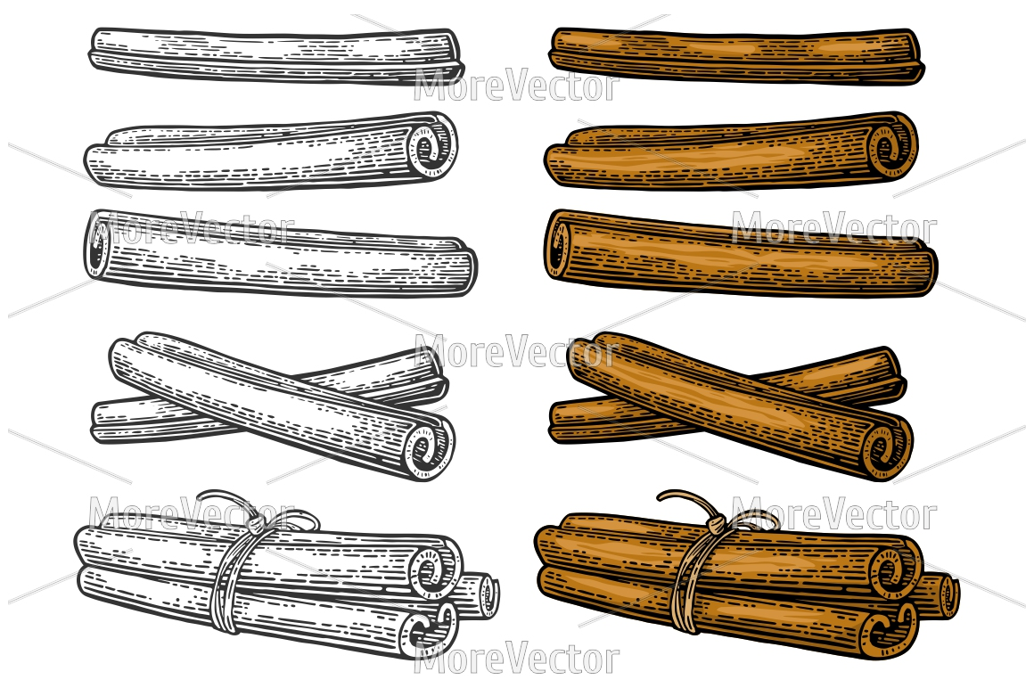 Cinnamon stick set. Single and bunch tied by rope. Engraving example image 1