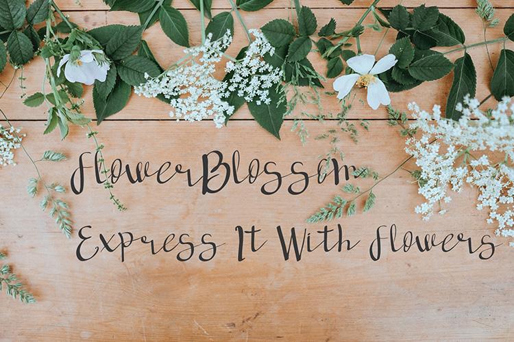 deep forest script handwritten font example image 4