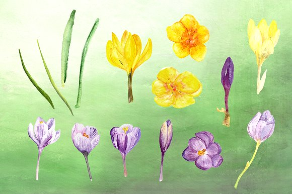 Spring Melody Watercolor Clipart Set example image 2