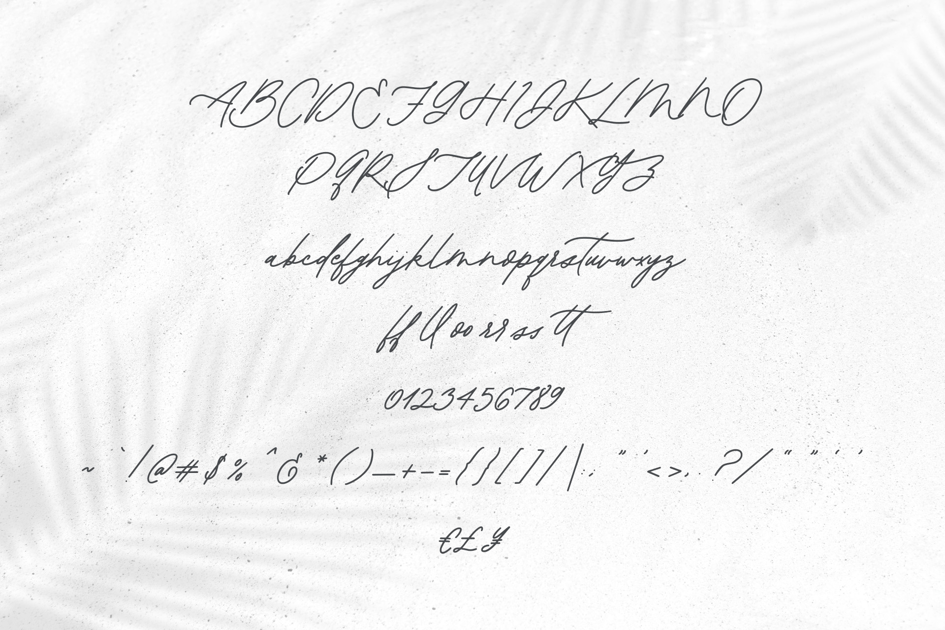 Sweetshore Casual Script Font example image 10