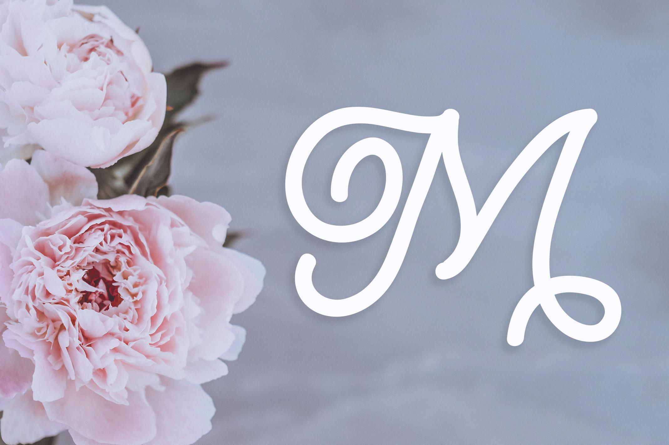 Lusy   Monogram Font example image 2