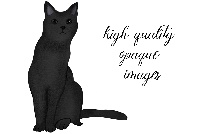 7 cats . watercolor set. hand drawn example image 2