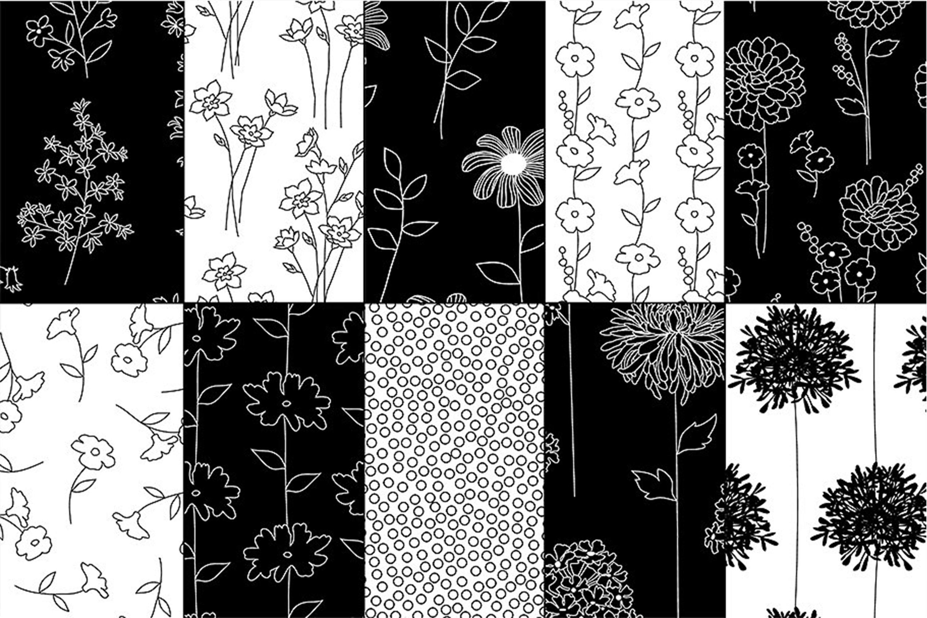 Black & White Botanical Patterns example image 2