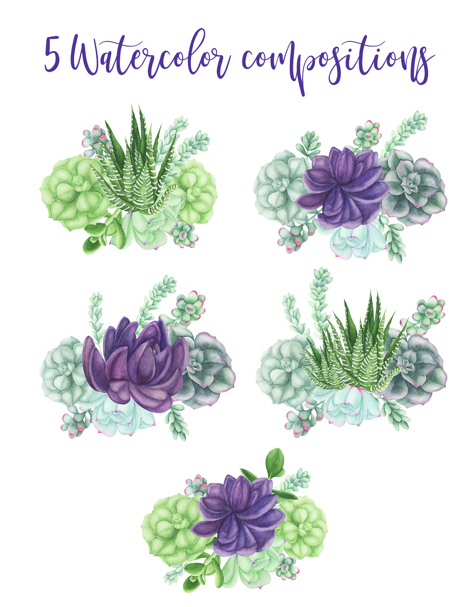 Watercolor Succulents Compositions example image 2