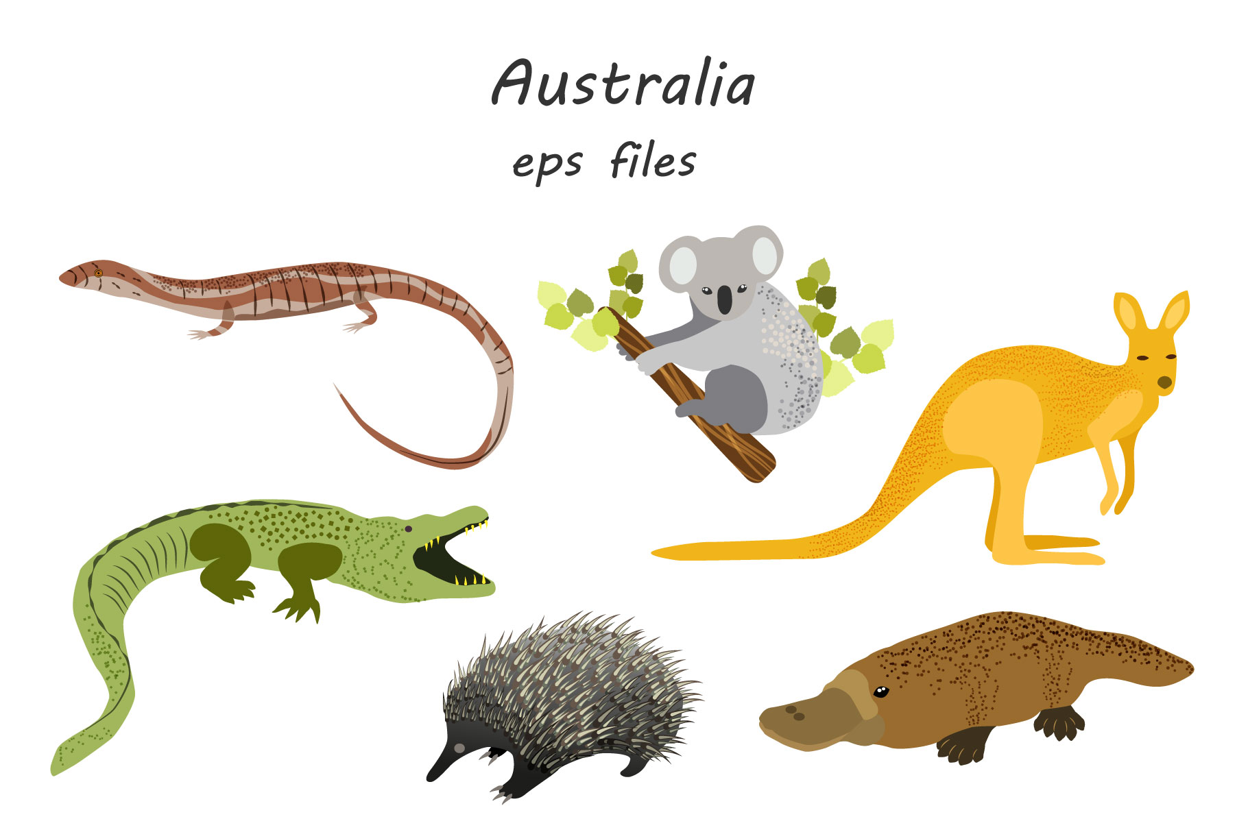 Australian Animals example image 5