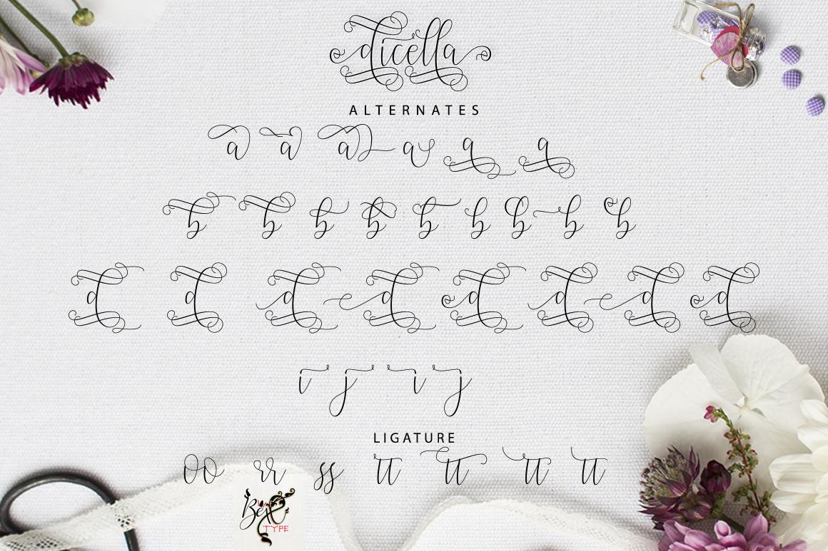 Dicella Script example image 8
