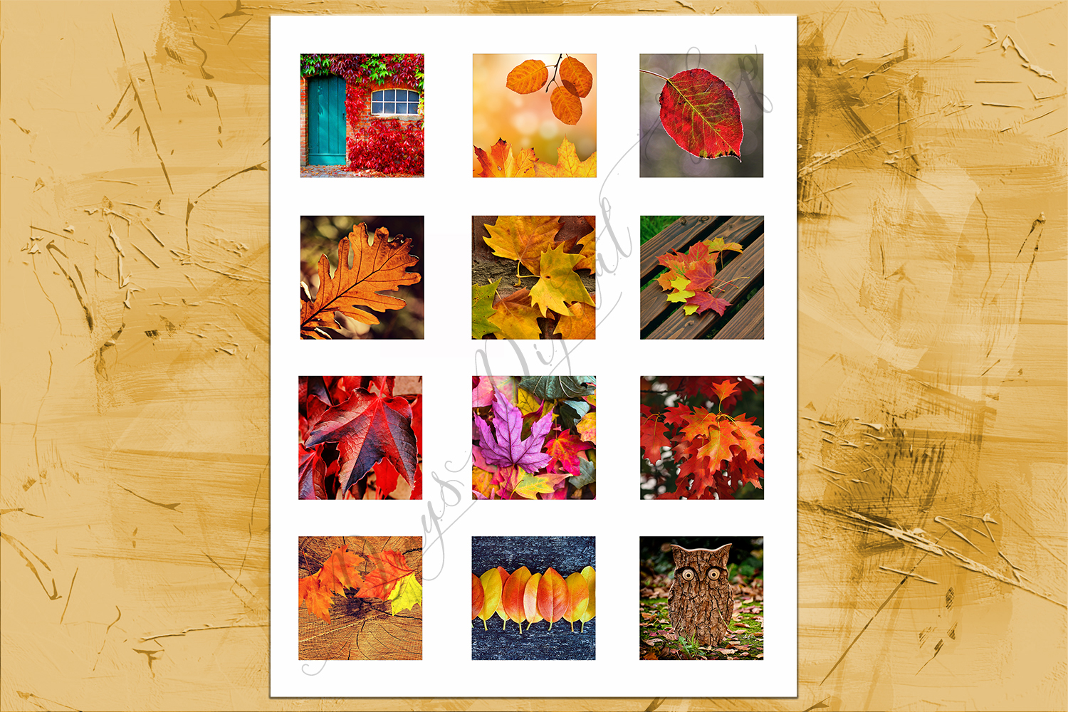Fall Leaves, Digital Collage Sheet, Printable Images,SALE example image 3