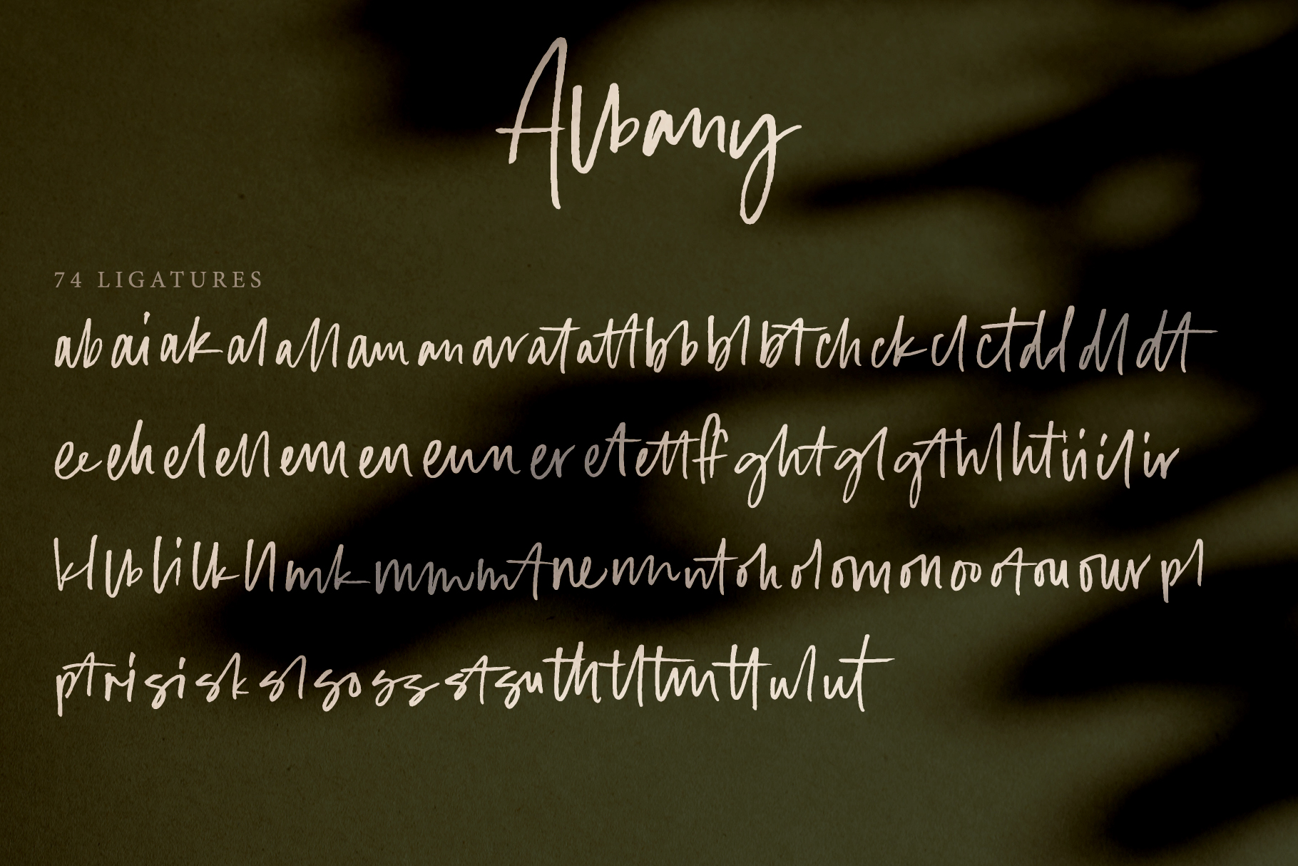 Albany | An Autumn Script example image 3