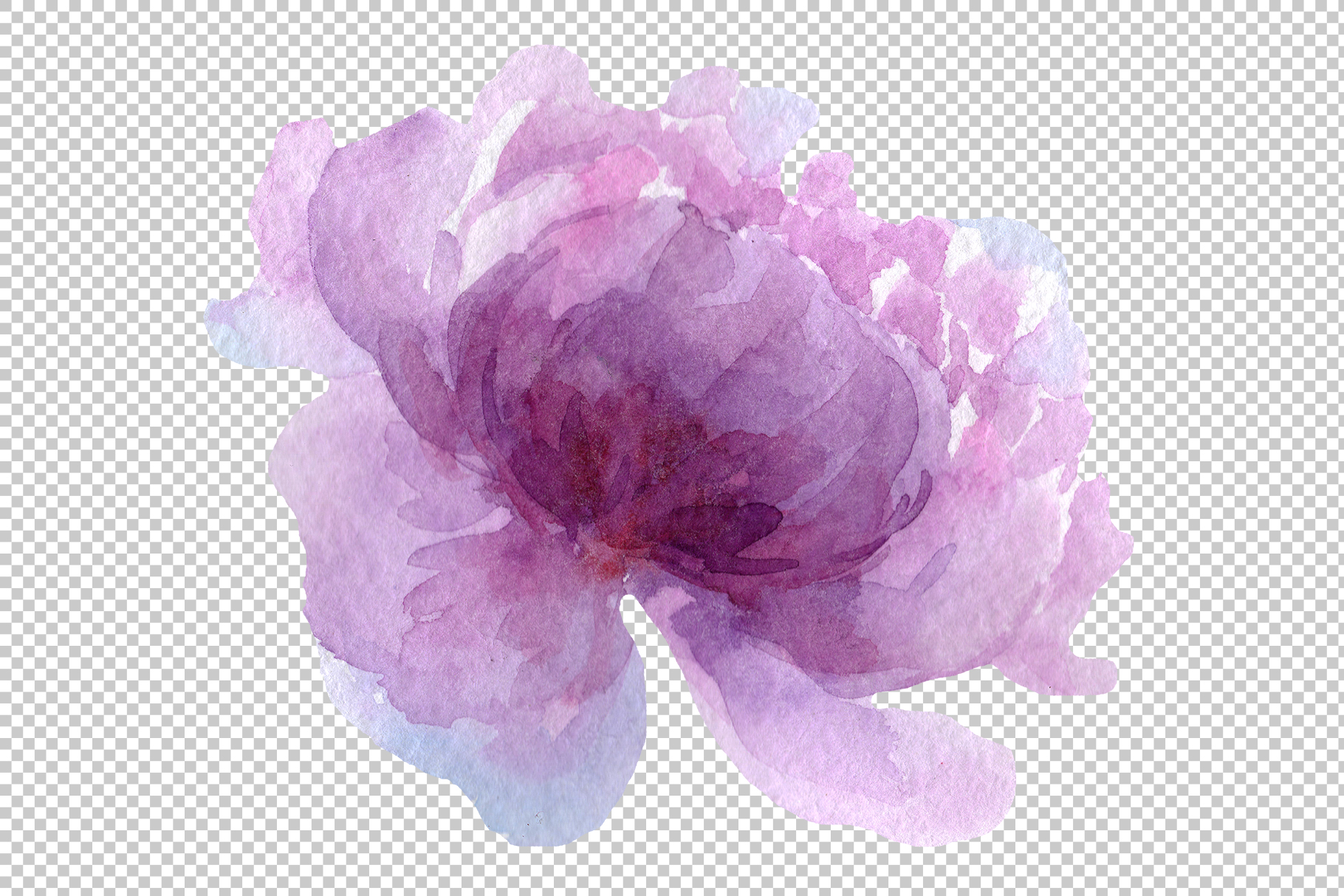 Delicate colorful peony PNG watercolor set example image 3