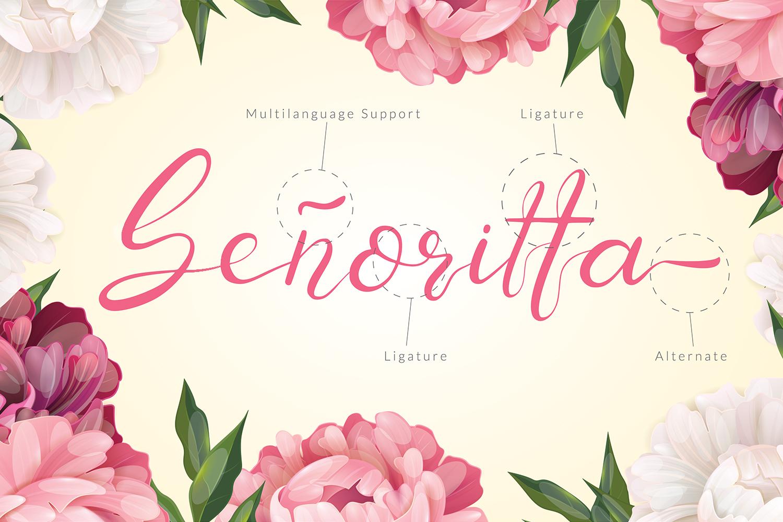 Senoritta - Beautiful Script Font example image 2