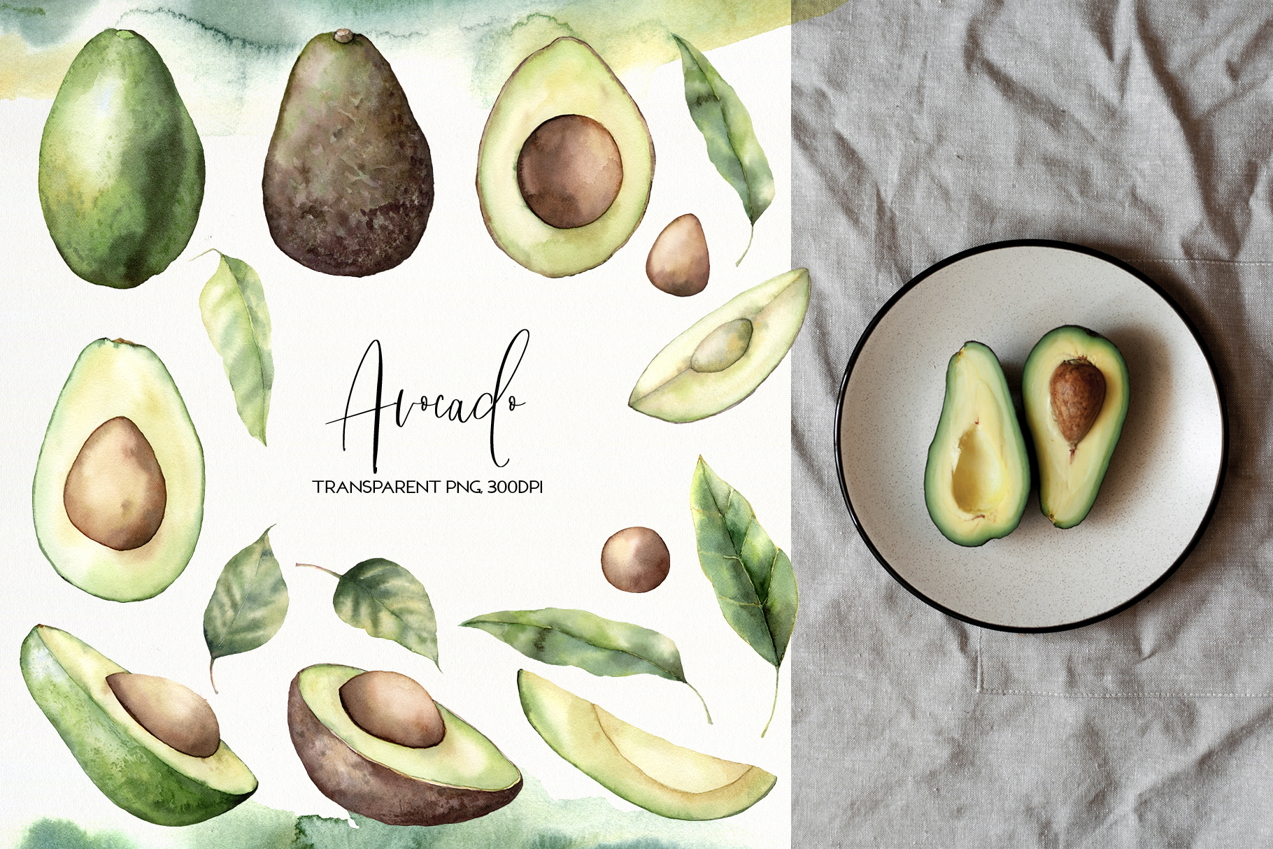 Avocado. Graphic collection example image 2