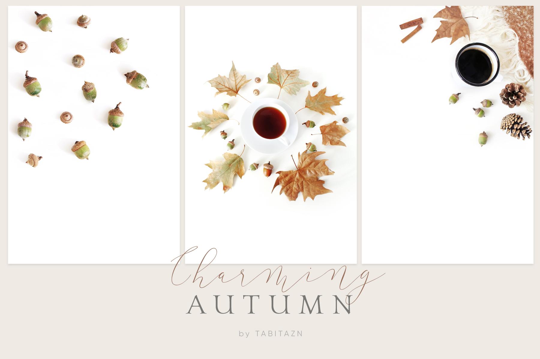 20 Charming autumn mockups & stock photo bundle example image 4