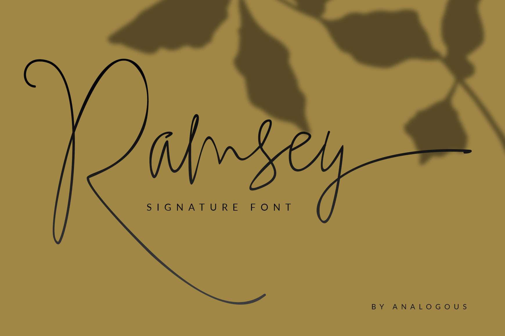 Ramsey Signature example image 1
