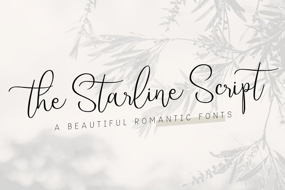 Starline | Beautiful Script Fonts example image 1