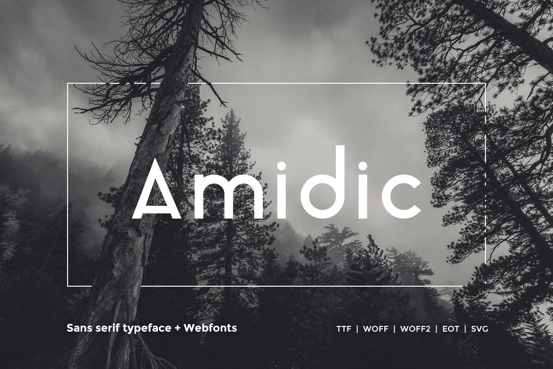 Amidic - Modern San-serif Typeface WebFont example image 1
