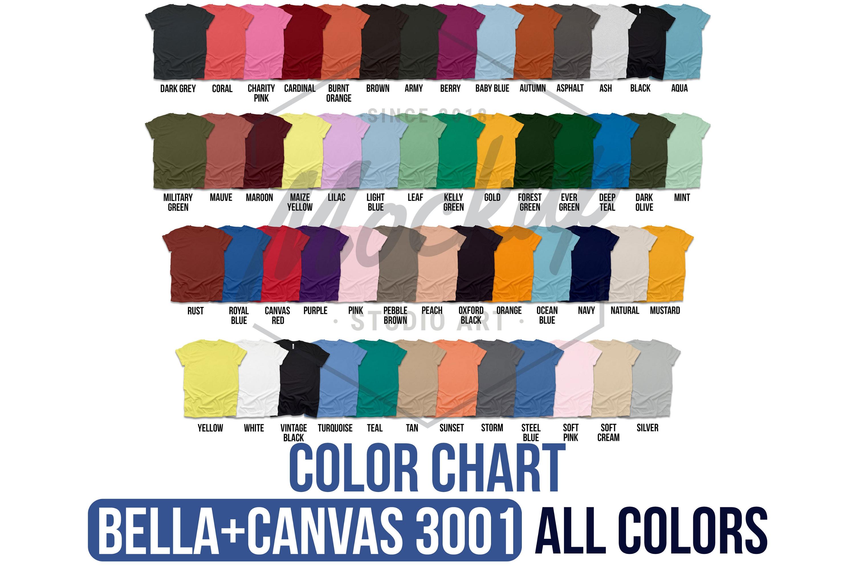 1000 Huge Bundle Shirt Mockup, Bella Canvas, Gildan Mockups example image 10