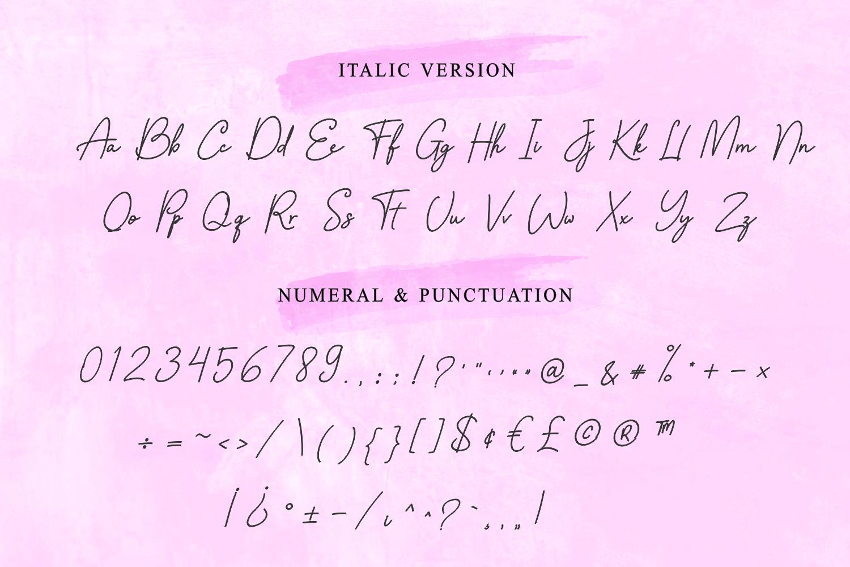 Fellicya Stylish Font example image 13